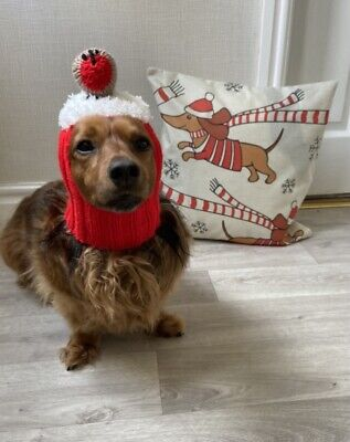 £7.50 • Buy Dachshund Sausage Dog Christmas Red Hat Cushion Cover 18' X18'