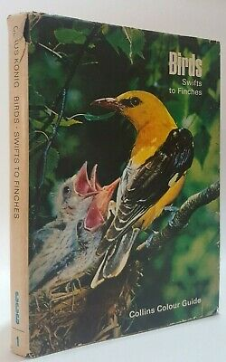 £4 • Buy Birds Swifts To Finches Claus Konig Bird Watching Ornithology Field Guide Book