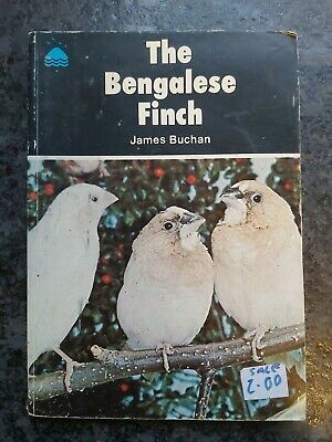 £10 • Buy The Bengalese Finch James Buchan  Cage Birds Book