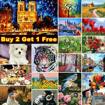 £8.99 • Buy DIY Oil Painting By Numbers Kit Paint On Canvas For Adult Kid Beginner Frameless