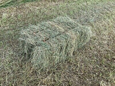 £3.50 • Buy Small Bale Meadow Hay