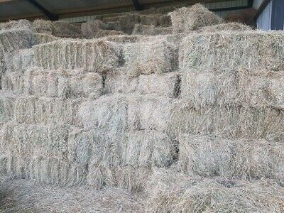 £3 • Buy Conventional Bales Of Hay