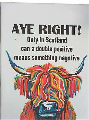 £6.95 • Buy Aye Right Funny Highland Cow Colourful Scottish Wall Art Printed Framed Canvas