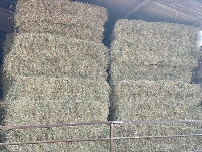 £12 • Buy Hay Bales Stoke On Trent , Delivery Available