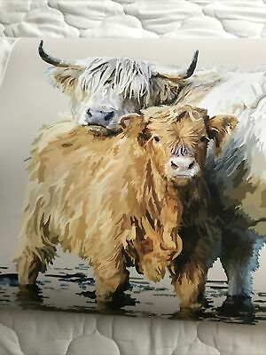 £7.50 • Buy Highland Cow Picture 16/23 Inches