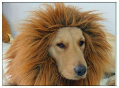 £5.69 • Buy Halloween Pet Clothes  Dog Costumes Lion Mane Wig For Large Dogs Fancy Dress Up
