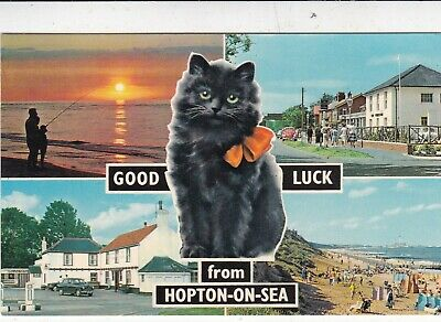 £1.30 • Buy Hopton On Sea Multiview Postcard Posted 1978 VGC