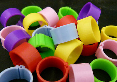 10 X 16mm Clic Leg Rings Chickens Poultry Mix Colours • 1.99£
