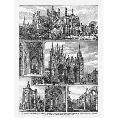 £12.95 • Buy Views Of PETERBOROUGH Cathedral - Antique Print 1882