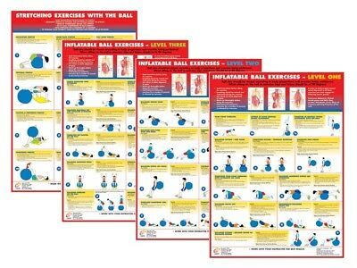 £24.99 • Buy Exercise Ball Training Posters Gym Ball Fitness Charts