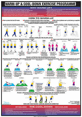 Warm Up Cool Down Exercise Gym Poster Fitness  Home Training  Keep Fit Chart • 9.99£
