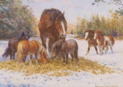 £1.99 • Buy Shire Horse  Farming Suffolk Punch Traditional Christmas Xmas Card