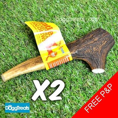 £11.94 • Buy 2 X Antler Dog Chews Small Medium Large XL Stag Deer Bar Horn Natural Chew Antos