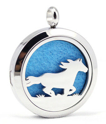 AU25.81 • Buy Racing Horse, Diffuser Necklace Locket Stainless Still Chain & Cord, OIL, Pads