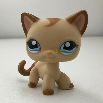 Lps Kittens Compare Prices On Dealsancom