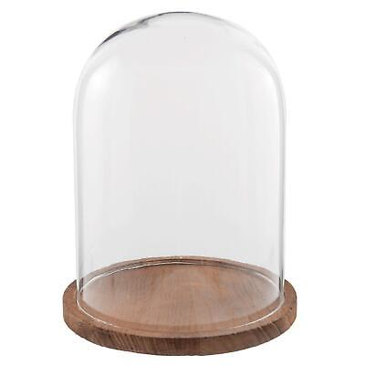 £28.68 • Buy Glass Display Cloche Bell Jar Dome Flower Preservation Cover Wooden Base 29 Cm