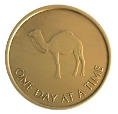 $4.75 • Buy Wendell's Camel ODAT Bronze Alcoholics Anonymous AA Coin Chip Medallion Token