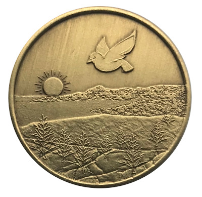 $4.75 • Buy Wendell's Dove Bronze AA Recovery Affirmation Coin Alcoholics Anonymous Token