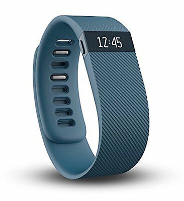 $ CDN89.99 • Buy Fitbit Charge Wireless Activity Wristband Large Slate