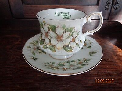 £19.99 • Buy  Vintage Cup & Saucer Queens Rosina China -Dogwood VGC