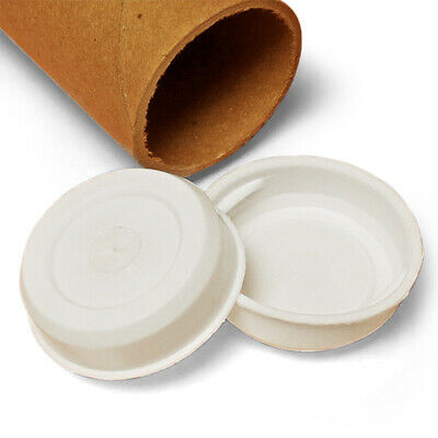 $8.99 • Buy 2  White Plastic End Caps For Shipping Mailing Tubes Pack Of 10/20/50/100