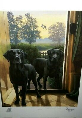 £120 • Buy Early Risers By Nigel Hemming Limited Edition Black Labradors