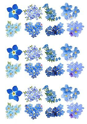 24 Mixed Forget Me Not Blue Flower Edible Wafer Paper Cake Toppers Decoration • 1.99£