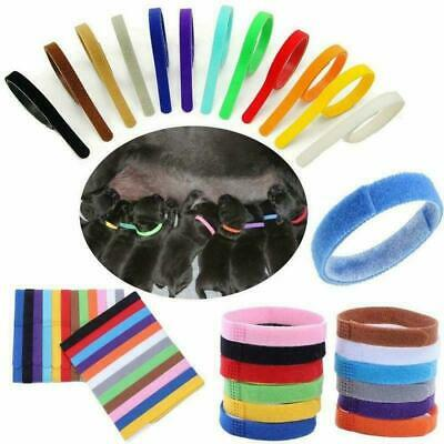 12 Colors Nylon Puppy Litter Identification Snap Collars ID Identification Bands • 4.74£