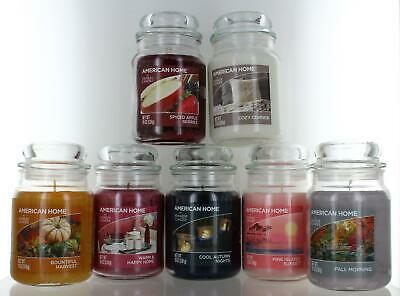 Yankee Candle American Home Collection Large 19oz (538g) Jars Choice Of 19 Fragr • 14.99£