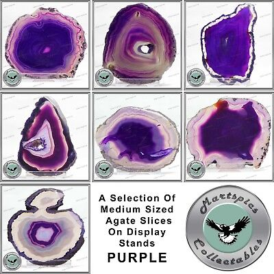 AGATE A Selection Of Purple Medium Sized Agate Slices On Display Stands • 18.99AU