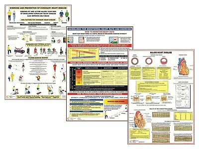 Healthy Heart Exercise Educational Posters Heart Disease Information Charts • 9.99£