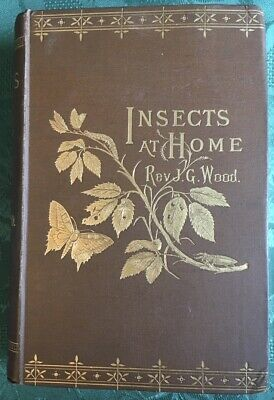£79.99 • Buy Insects At Home Rev J G Wood 1883 Hb