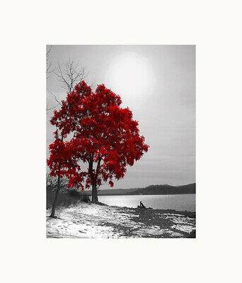 $16.99 • Buy Black White Red Wall Art, Tree Lake, Bedroom, Living Room Home Decor Picture