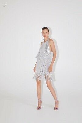 $21.82 • Buy ZARA Super Sexy Low Back Silver Fringe Sequin Dress SMALL