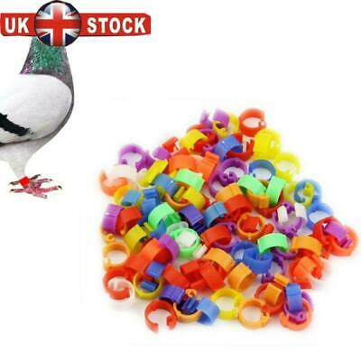 100Pcs Poultry Leg Rings 8mm Plastic Dove Parrot Pigeon Clip Ring Color Randomly • 3.21£