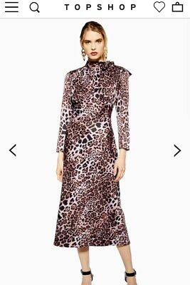 *New With Tags Topshop Leopard Print Bias Pussybow Pink Midi Dress UK6 XS RRP£49 • 12£