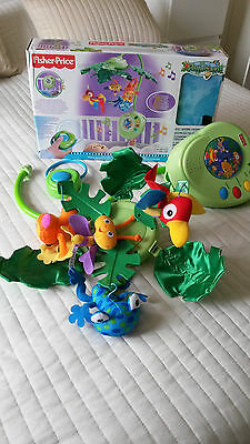 £40 • Buy Fisher-Price Rainforest Peek-A-Boo Leaves Musical Mobile