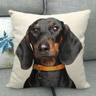 Dachshund Cushion Cover Very Cute Image For Your Home Sausage Dog Daxie • 9.95£