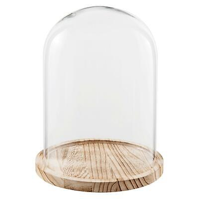 £28.68 • Buy Glass Display Cloche Bell Jar Cover Dome Flower Preservation Wooden Base 29cm