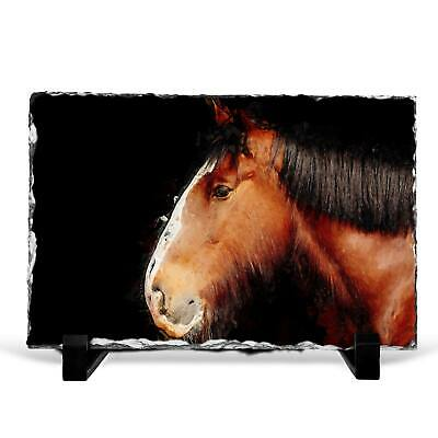 Brown Shire Horse In Abstract Slate Rock Framed Art Print Picture Ornament • 22.95£