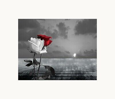$16.99 • Buy Black White Red Wall Art, Bathroom Bedroom Home Decor Wall Art Matted Picture