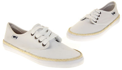 £11.99 • Buy Ladies White Rocket Dog Flat Textile Pumps Trainers Style Laced Shoes UK Size 3