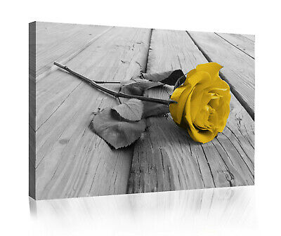 Large Mustard Yellow Grey Rose Flower Canvas Wall Art Picture Print • 11.49£