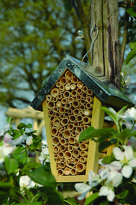 £16.99 • Buy Wooden Solitary Bee Bug House Hive Hotel Zinc Roof FSC Cert Wood Bamboo 20cm