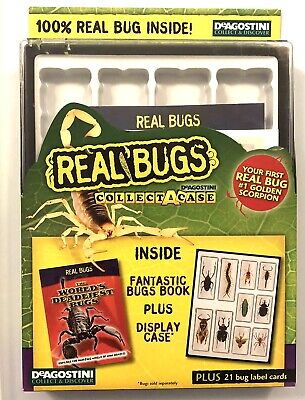 $11.99 • Buy DeAgostini Real Bugs: Collect-a-Case Includes #1 Golden Scorpion
