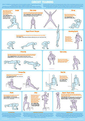Circuit Training Exercise Poster Keep Fit Gym Chart • 9.99£