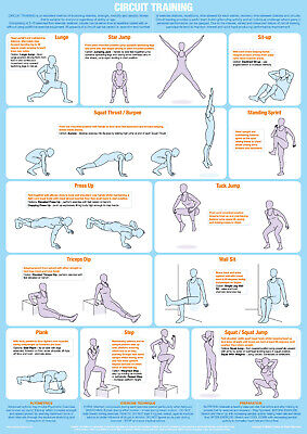 Exercise Circuit Training Poster Fitness Gym Chart • 9.99£