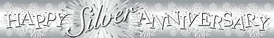 Just Married Holographic Foil Banner Ivory Silver Gold Wedding Party Decoration  • 1.89£