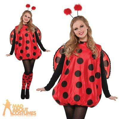Adult Darling Ladybird Costume Ladies Ladybug Insect Book Week Day Fancy Dress • 18.99£