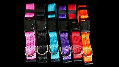 Dog Puppy Solid Collar Nylon Adjustable Collars 4 Sizes 6 Colours Pet Supplies • 3.09£
